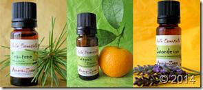 petit-guide-dutilisation-huiles-essentielles--L-YaGdfw